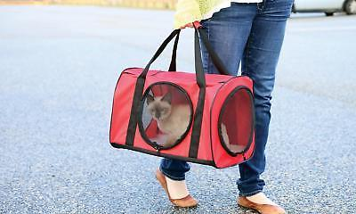 Red Large Cat Carrier Travel W/ Tunnel - For Dog Kitty