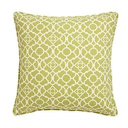 Jiti Moroccan Green Outdoor Throw Pillow, 20 by 20""
